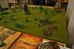 161227 - Congo Kong Fred (2)
